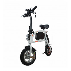 E-Bike SABWAY S1 Brushless...