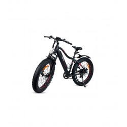 Bicicleta eléctrica XL con...