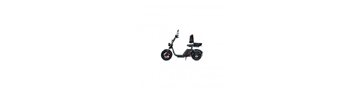 ◁ SCOOTERS ELECTRIC MATRICULABLES